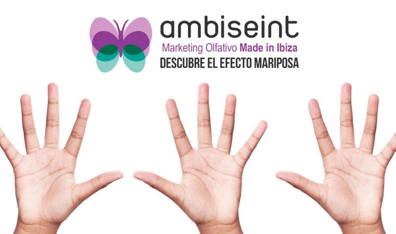 Franquicia Ambiseint