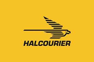 logo franquicia halcourier
