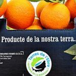 La franquicia Caprabo, primera en vender cítricos de la Reserva Terres de l'Ebre