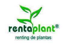 franquicia Rentaplant