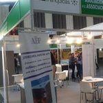 AEF Bizfranquicias